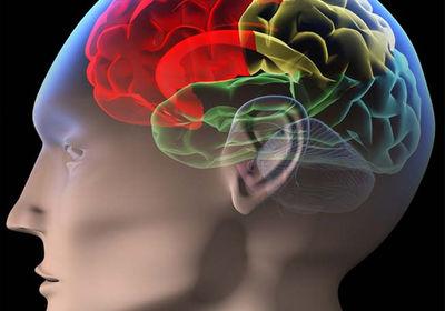 colored-brain